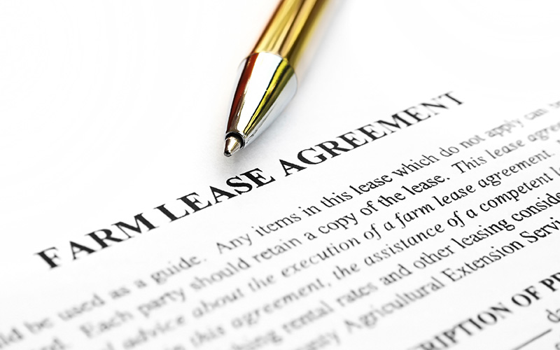 Eight Steps To Constructing An Effective Farmland Lease