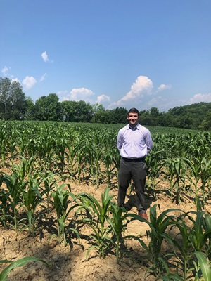 Stephen Clarke checks out the field of corn.